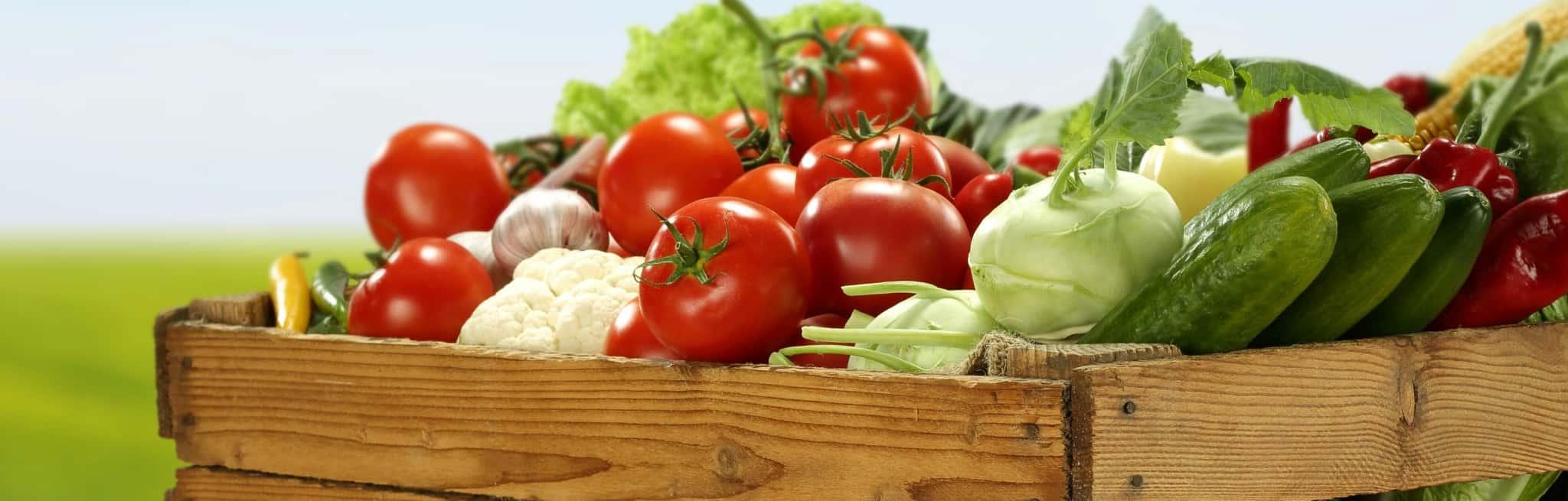 Vegetarian Inspired ARCHIVE